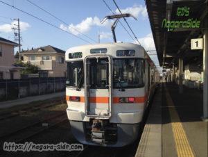 武豊線 313系