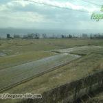 湖西線から望む琵琶湖と水田