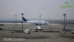 中部国際空港に停泊するドリームリフターとB737