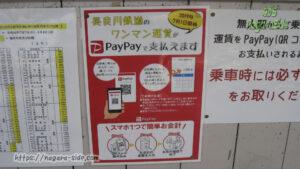 未だ継続もようの長良川鉄道のPayPay支払い